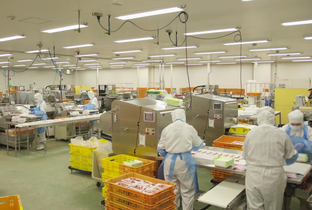 食品製造加工分野